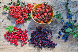 Various wild berries on a wooden background