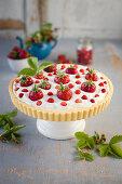 Mascarpone tart garnished with garden and wild strawberries