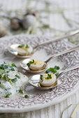 Hard-boiled quail eggs with herb quark