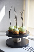 Green toffee apples on twigs