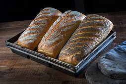 Freshly baked, light, seeded loaves in a baking tin