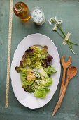 Mixed leaf salad with wild garlic oil and wild garlic buttermilk dressing