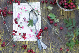 A menu with cutlery and a sprig of hawthorn on a rustic wooden table