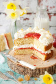 Cut open Vanilla Sponge Cake filled with jam and cream with crystallised ginger