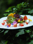Colourful spring salad with tomatoes, mozzarella and edible flowers