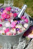 Bottle of sparkling wine, flowers and flower ice cubes in zinc bucket in garden