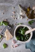 Ingredients for pesto alla genovese (basil pesto, Italy)