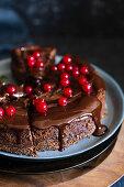 Schokoladen-Käsekuchen mit roten Johannisbeeren