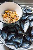 Mussel meat in a bowl with shells next to it