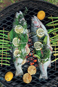 Trout with butter, lemon and herbs on a grill