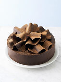 Chocolate cake with waves