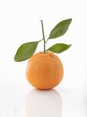 An orange with a leaf