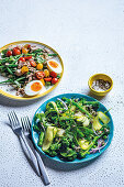 Niçoise salad, Green crunch salad with pumpkin seed dressing