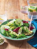 Pickled fennel and apple salad with pumpkin sprinkle