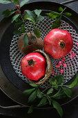 Autumnal arrangement of pomegranates, leafy twigs and coconut shells