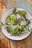 Fresh herbs - fennel, rosmery, sage, tyme