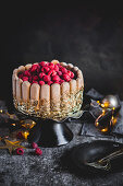 Lady finger limoncello raspberry mousse cake