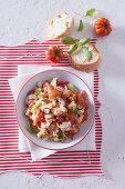 Bread salad with tomatoes and red onions