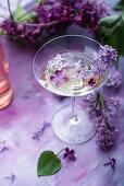 Cocktail mit Fliedersirup