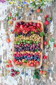Mixed summer berries
