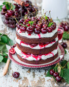 Cherry chocolate cake with mascarpone cream