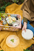 Picnic with cupcakes, wraps and cakes