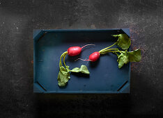 Two radishes in a wooden crate
