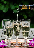 Pouring a bottle of prosecco into glass flutes lined up on a copper tray outside, with purple orchids, and greenery behind