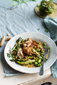 Braised marjoram rabbit with puntarelle and fava beans