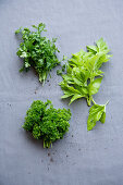 Smooth and curly parsley, Japanese parsley (mitsuba)