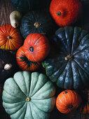 An arrangement of pumpkins including blue pumpkins