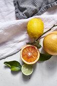 Half a blood orange, lime, lemon and grapefruit