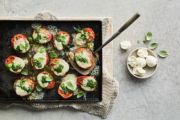Baked tomatoes with mozzarella and basil