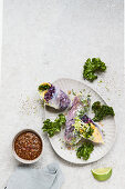 Winter rolls filled with red cabbage and kale with a pumpkin dip