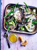 Sardines with fennel, avovado, radish and preserved lemon