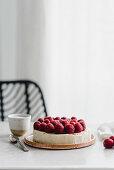 Vegan cashew cheesecake with raspberries