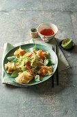 Wan Tan mit Garnelenfüllung auf mit Chinakohlsalat