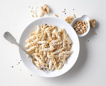 Penne pasta with a four-cheese sauce and nuts