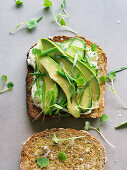 Avocado toast with sprouts and cream cheese
