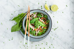 Udon noodle bowl with wild garlic pesto, spinach and peas (Asia)