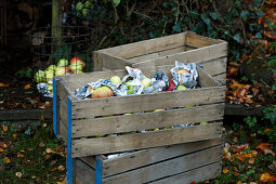 Freshly harvested apples wrapped in newspaper in wooden crate
