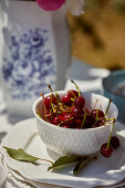 Bowl with fresh cherries