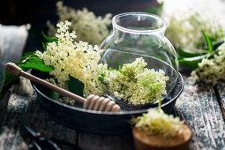 Preparing an elderflower oxymel remedy for sore throats