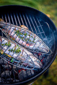 Grilling fresh trout with lemon and herbs in the fish grilling baskets
