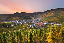 Blick auf Mayschoß, Ahrsteig, Rotweinwanderweg, Ahr, Rheinland-Pfalz, Deutschland