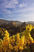 Blick aus den Weinbergen zur Burg Are, Altenahr, Ahrsteig, Rotweinwanderweg, Ahr, Rheinland-Pfalz, Deutschland