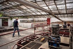 Maschinen zur Kaffeeherstellung, Hacienda Venecia bei Manizales, UNESCO Welterbe Kaffee Dreieck (Zona Cafatera), Departmento Caldas, Kolumbien, Südamerika