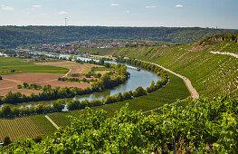 Der Neckar bei Mundelsheim, Kraichgau, Baden-Württemberg, Deutschland, Europa