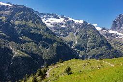 Uri Alps from Fürenalp, Stäuber, Engelberg, Switzerland