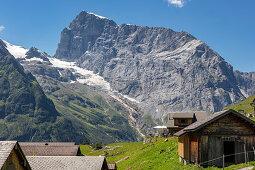 Alp Surenen in front of Urner Alps from Fürenalp, Stäuber, Engelberg, Switzerland